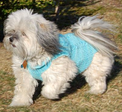 Ivy Brambles Happy Puppy Sweater Pattern