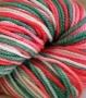 Sereknity Perfect Yarn Colorway Whattamelon